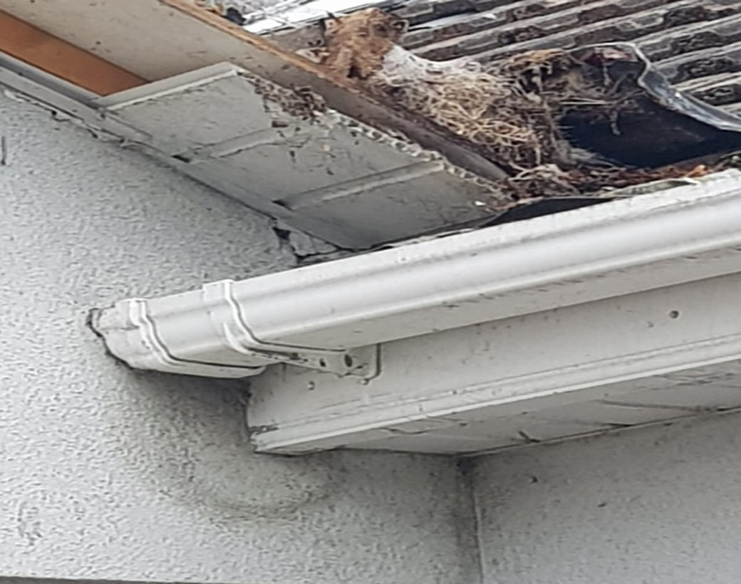 Fascia-and-Soffit-Repair